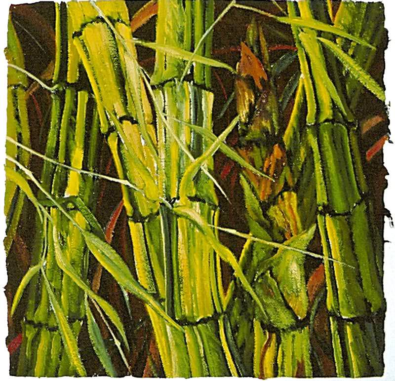 Bamboo by Jane Abrams
