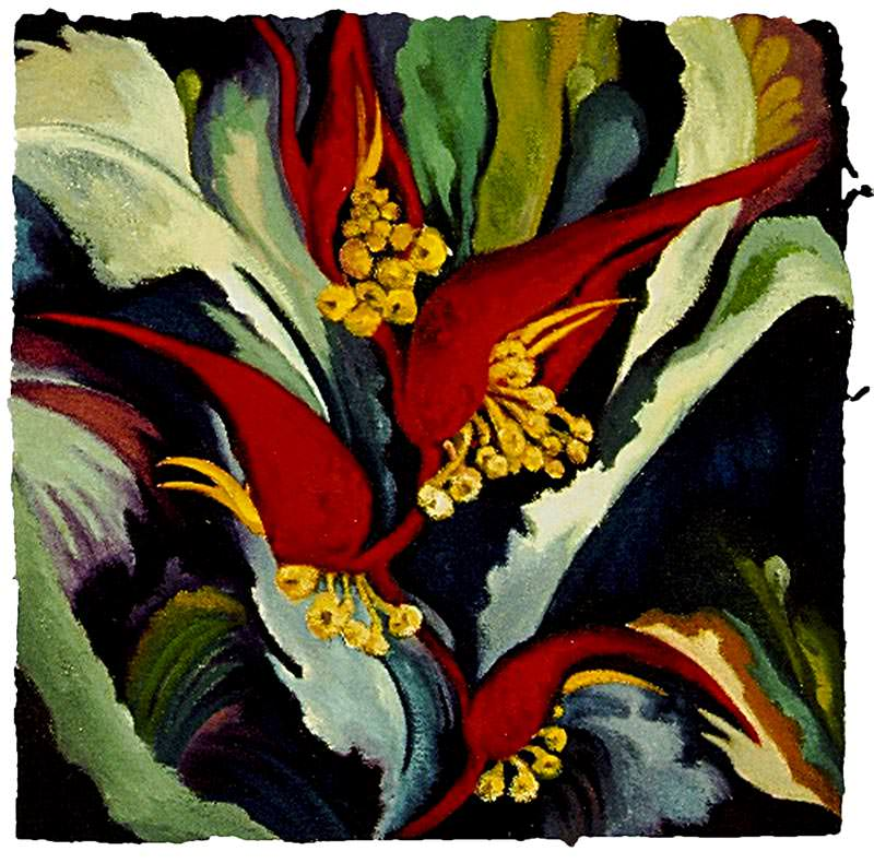 Heliconia I by Jane Abrams